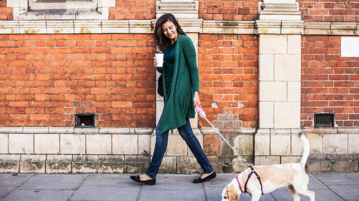 Procurando conforto e elegância? Veja como usar sapatilhas no dia a dia